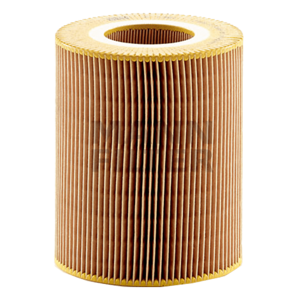 MANN MANN-Filter C 1381  - Stück