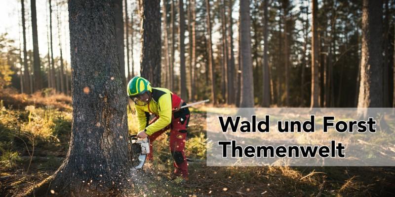 Wald und Forst